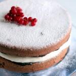 pastel de chocolate y coco - cocina para emancipados