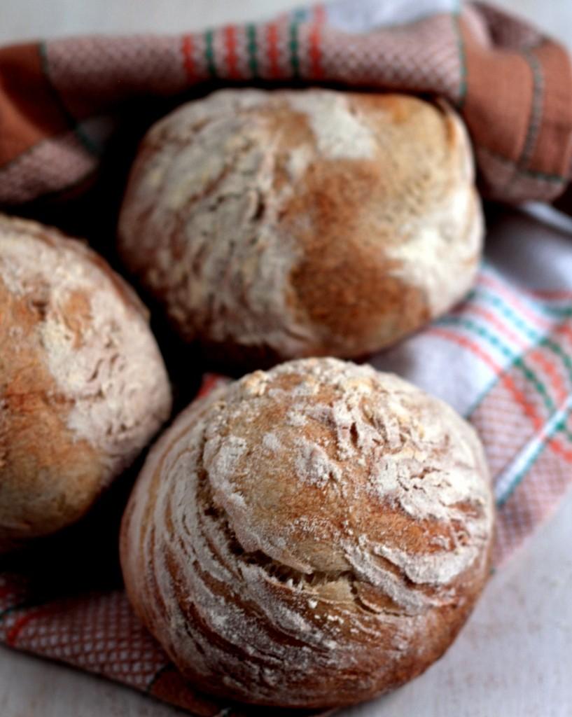 pan rústico con levadura